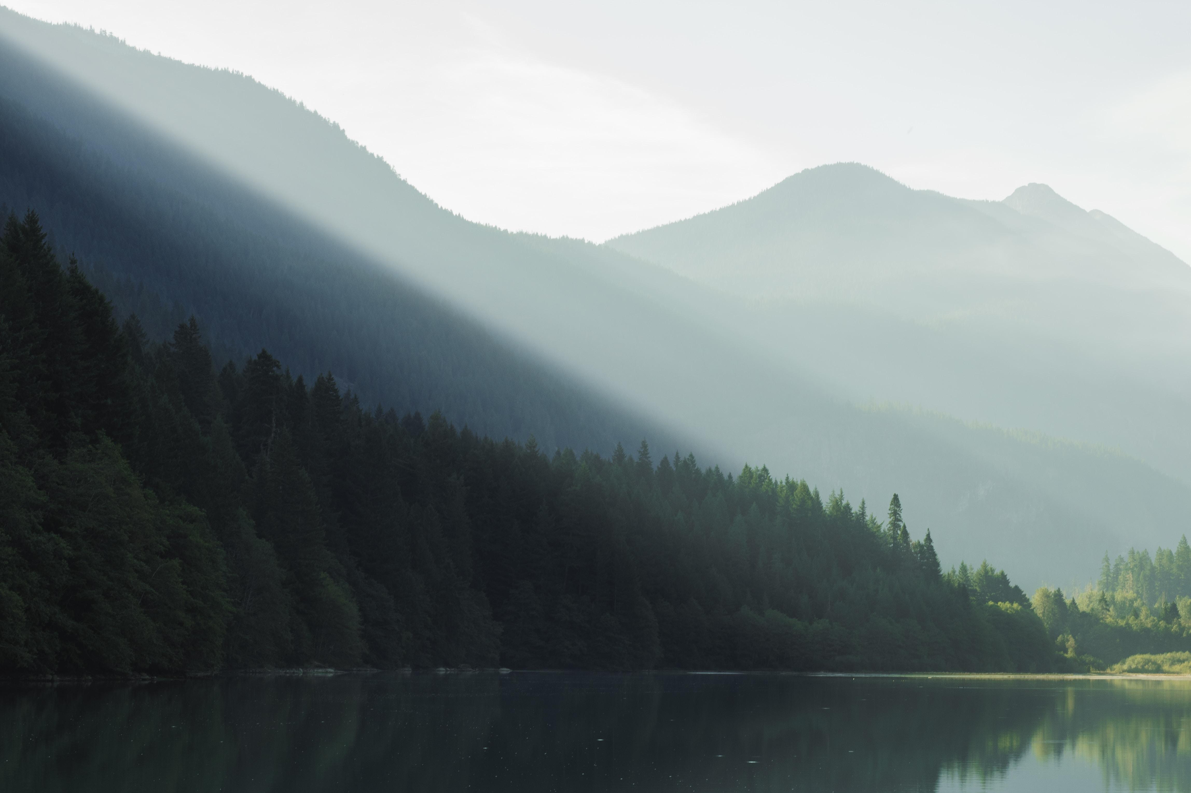 Pale sunrays falling on a still lake