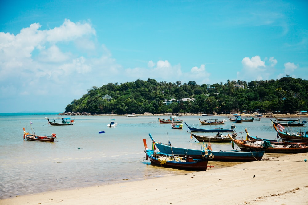 boats on shore during daytime