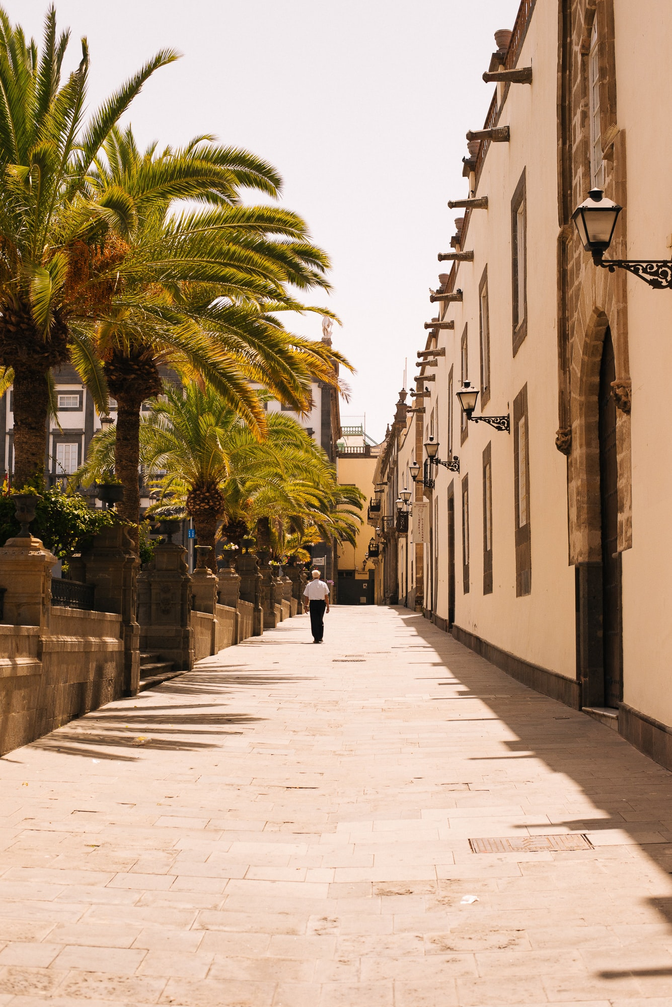 A brick street in the Canary Islands lined with palm trees and beautiful building architecture