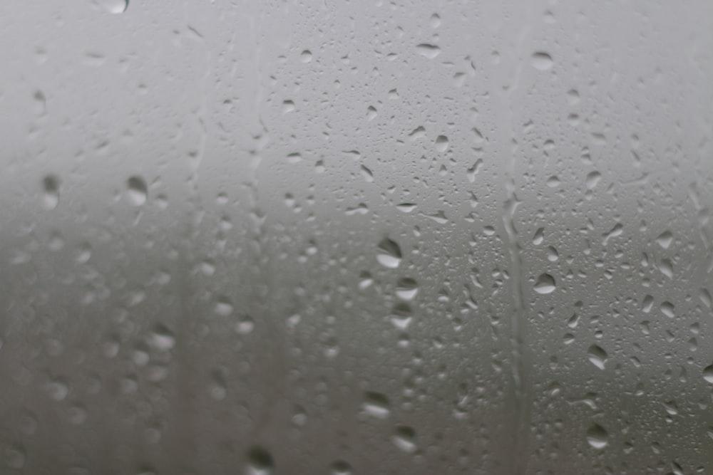 Rainfall on a window.