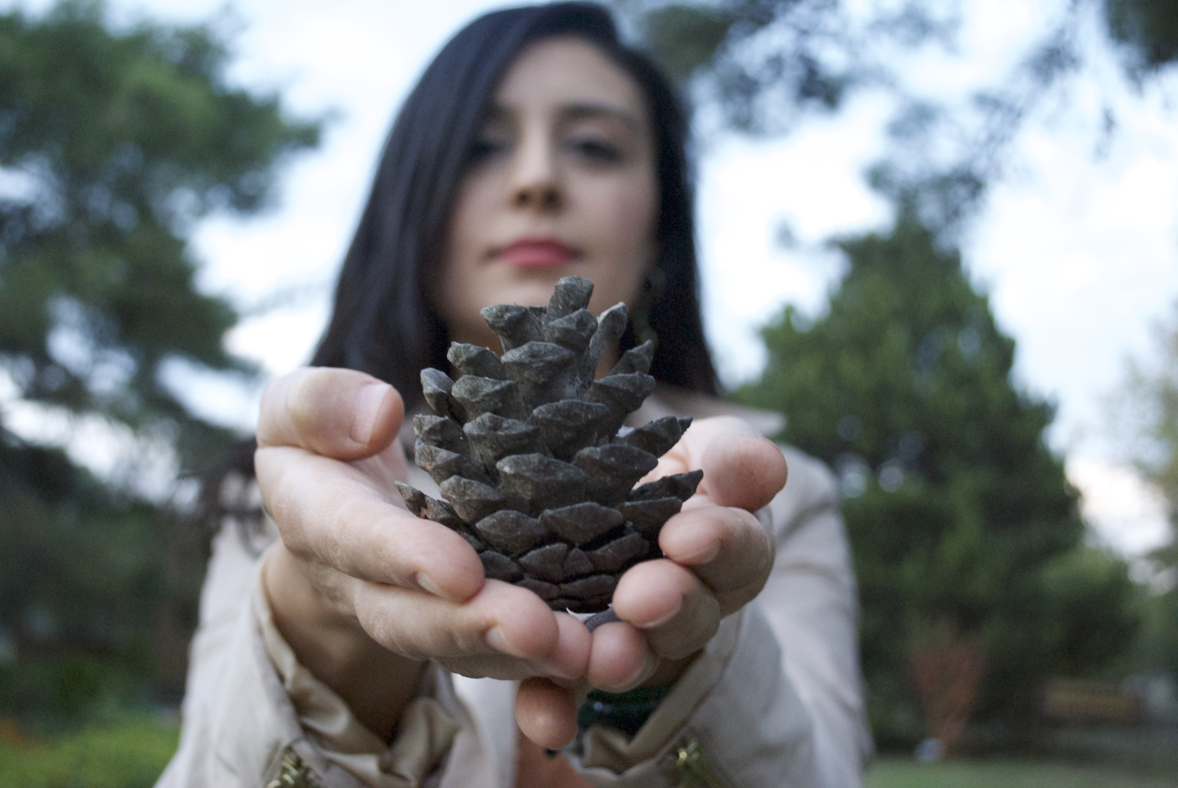 selective focus photography of woman holding brown pine cone