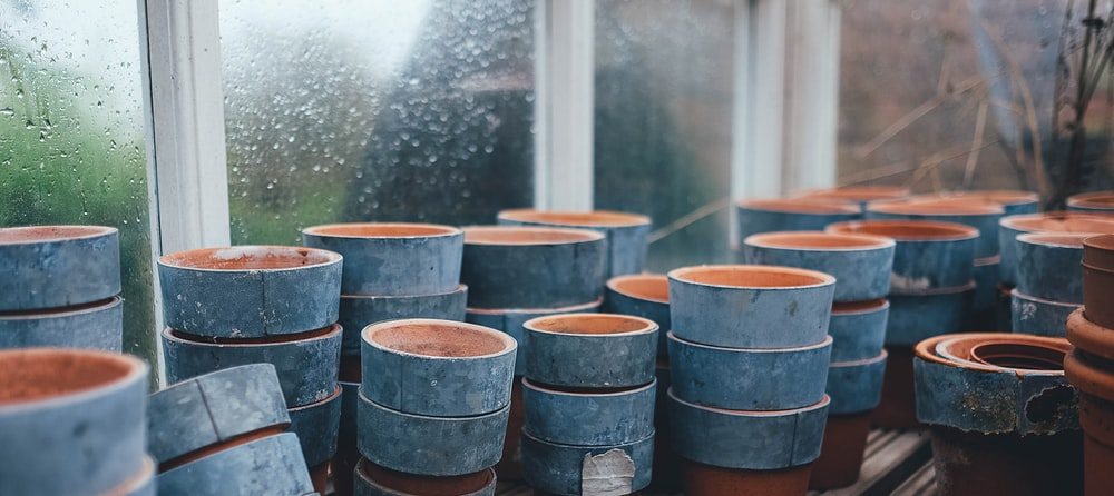 blue-and-brown plant pot lot