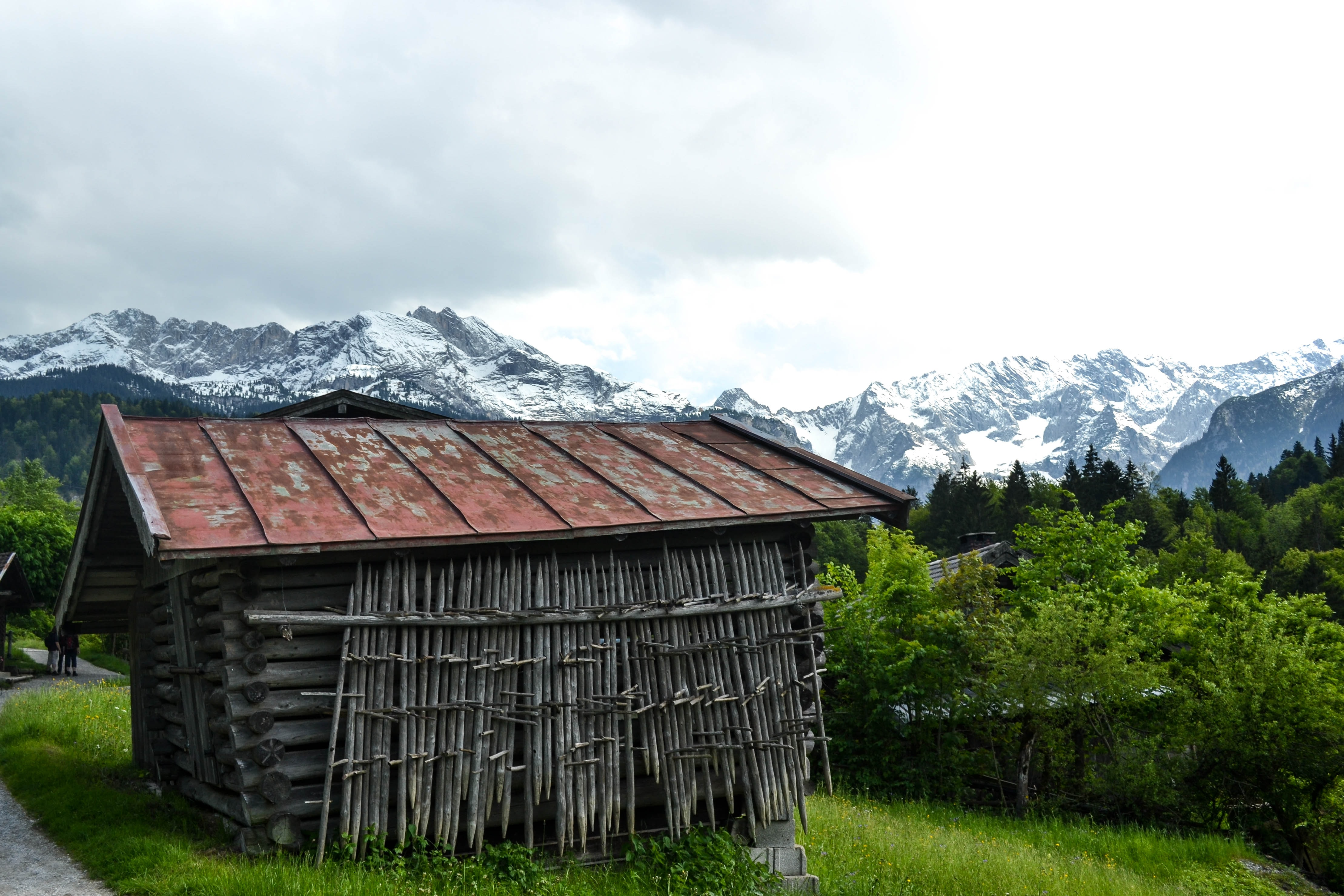 Old wooden shed with a tin roof on a grassy hill next to a road with trees and snow capped mountains in the background