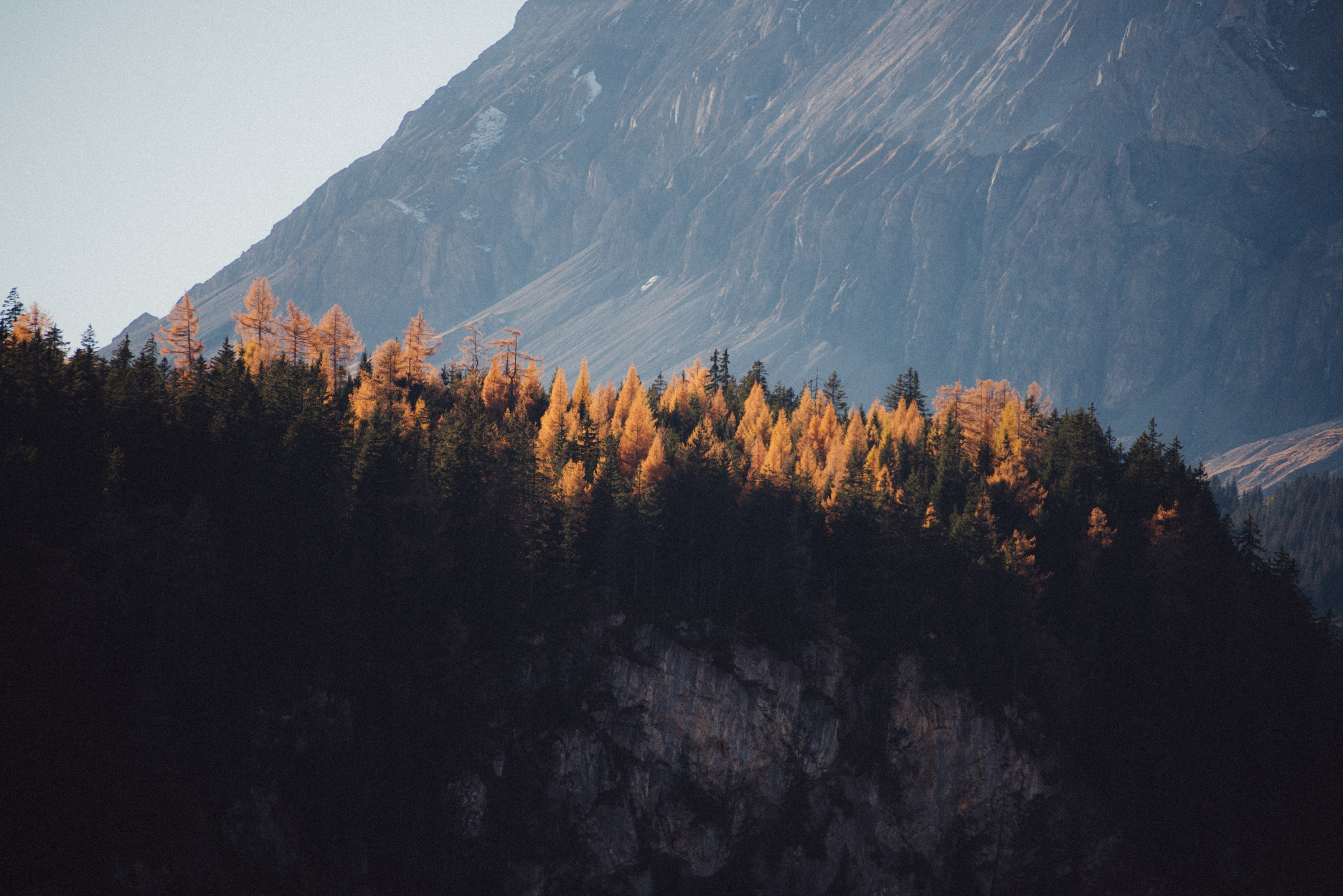 An autumn forest on top of a rocky hill at the foot of tall mountains in Kandersteg