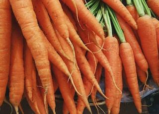 closeup photo of bunch of orange carrots