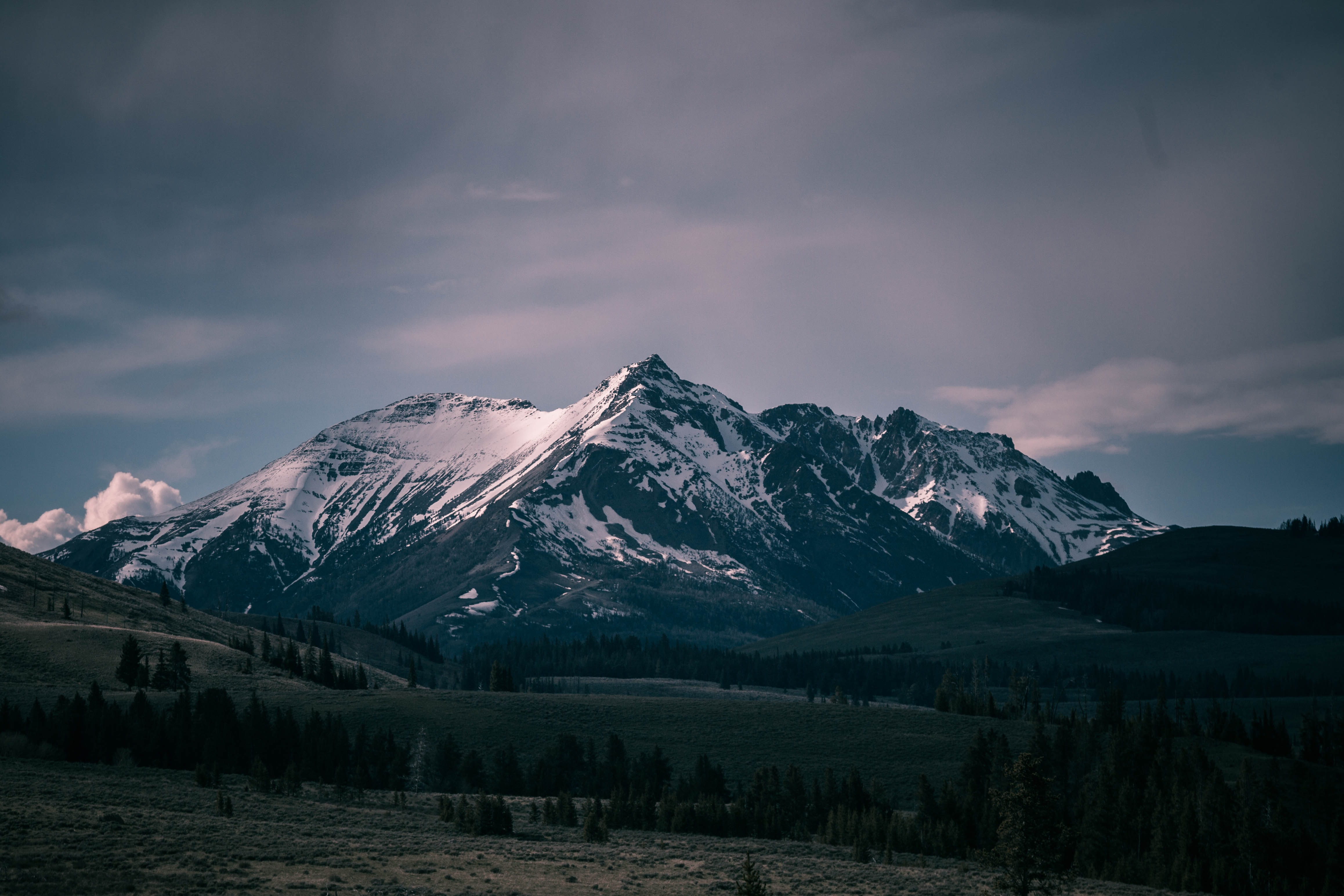 Snow covered mountains in the distance with forests and trees surrounding it in Yellowstone National Park.