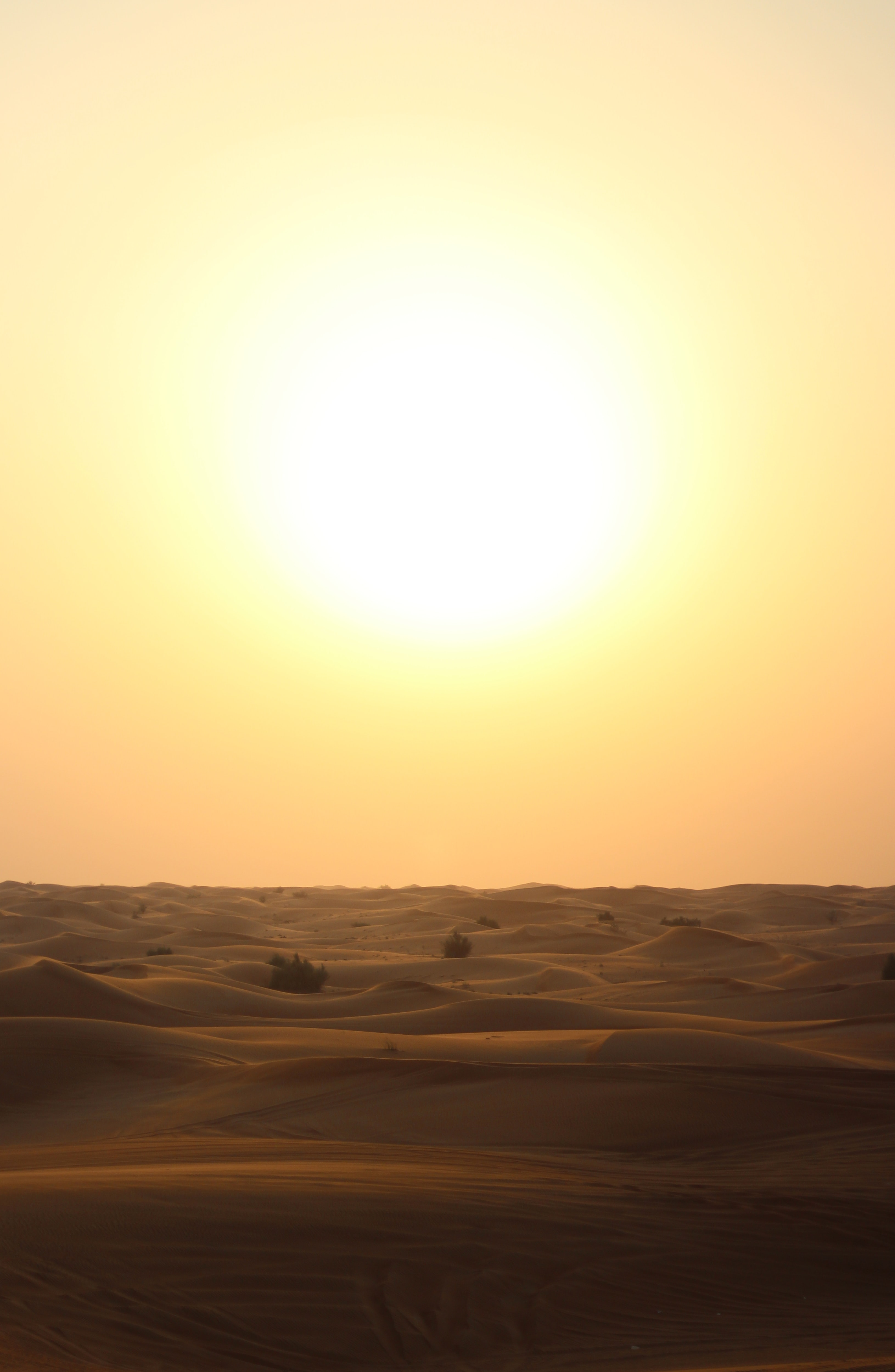 Sufficient view of the sunset over a Dubai desert on summer evening