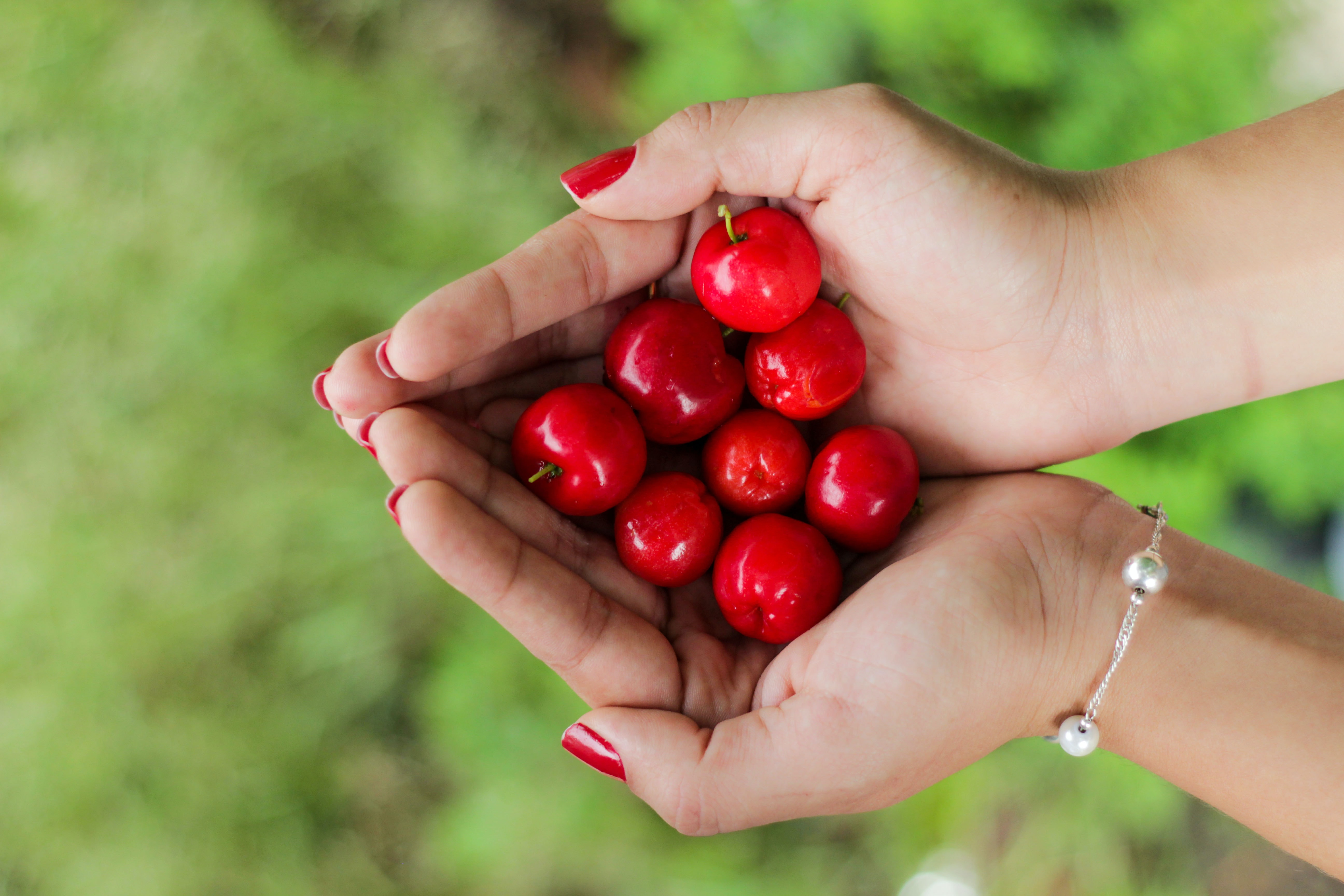 red berries on person's hands
