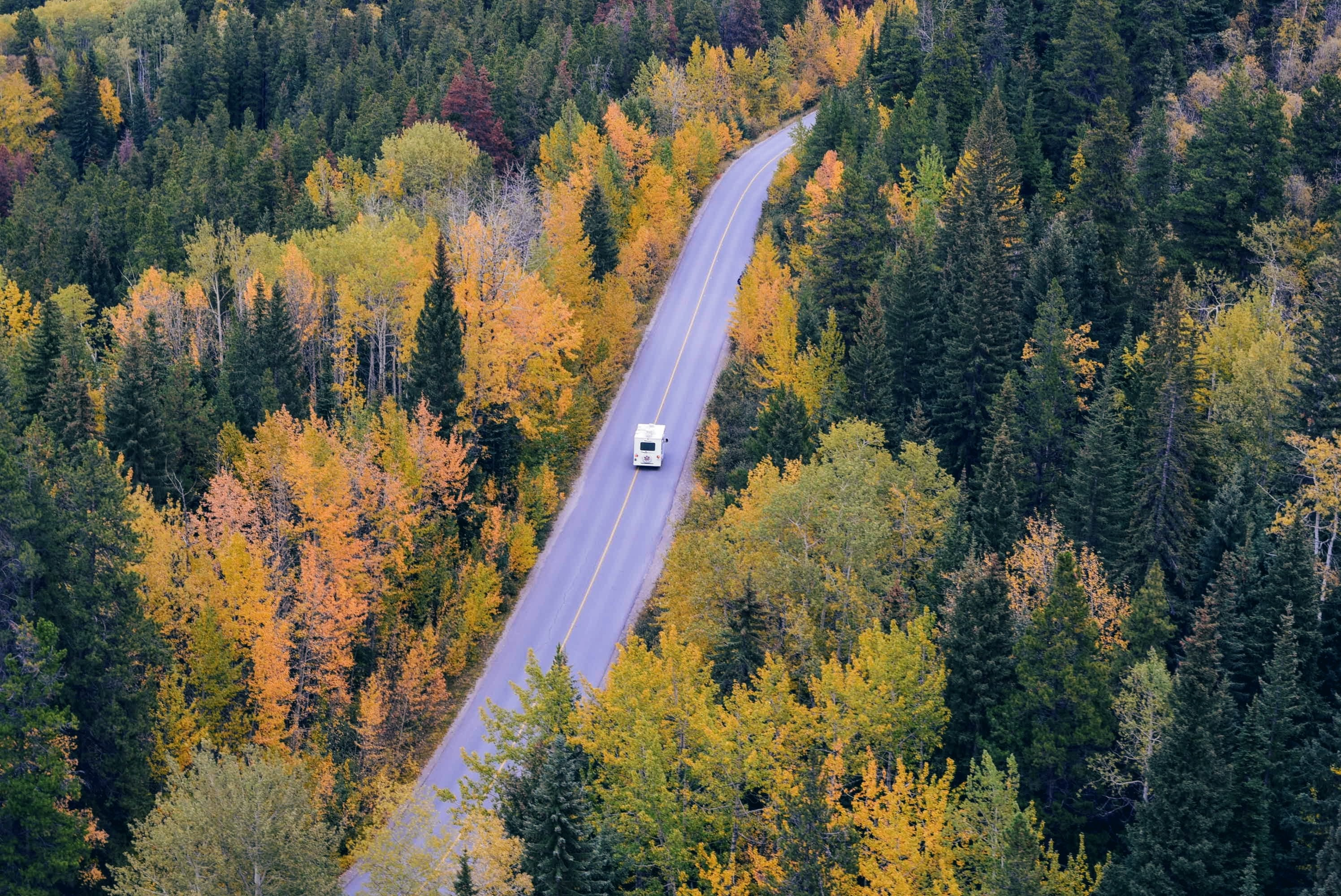 An aerial shot of a van driving down a road across the forest in Jasper