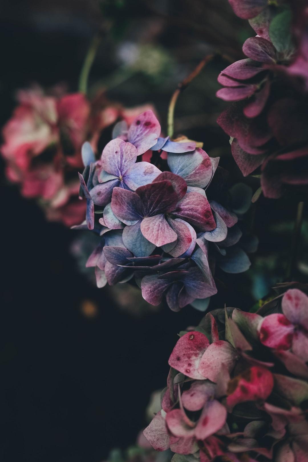 3941. Virágok