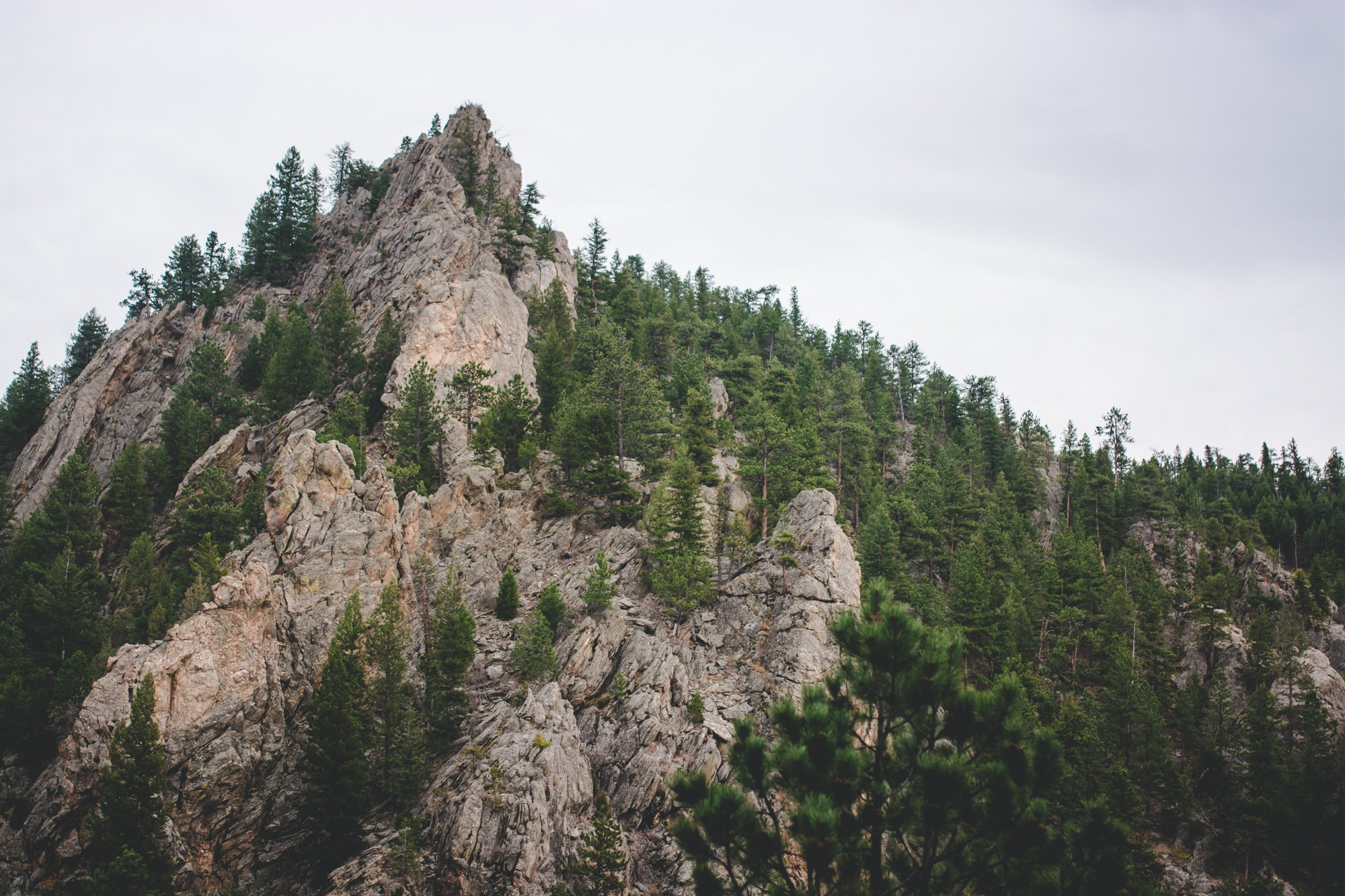 A low mountain with a jagged peak and wooded slopes in Colorado