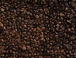 Tagesausflug Kaffeeplantagen