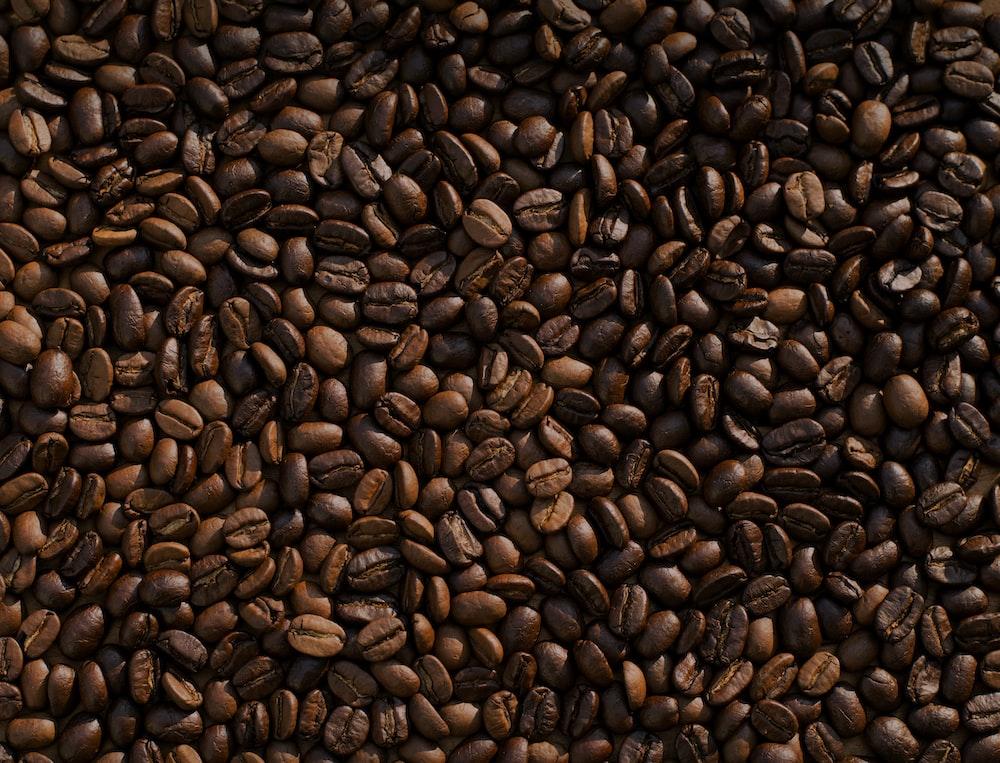 coffee bean lot