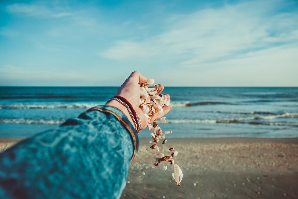 A person on the beach holding a hand full of shells out in Corbu