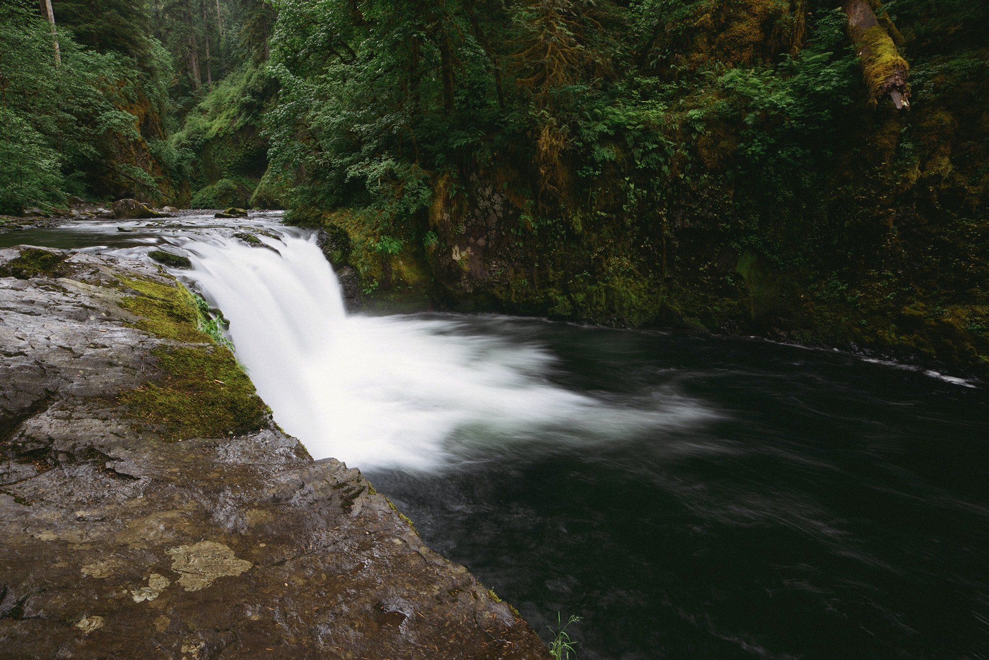 A low waterfall pouring into a river in a forest in Oregon