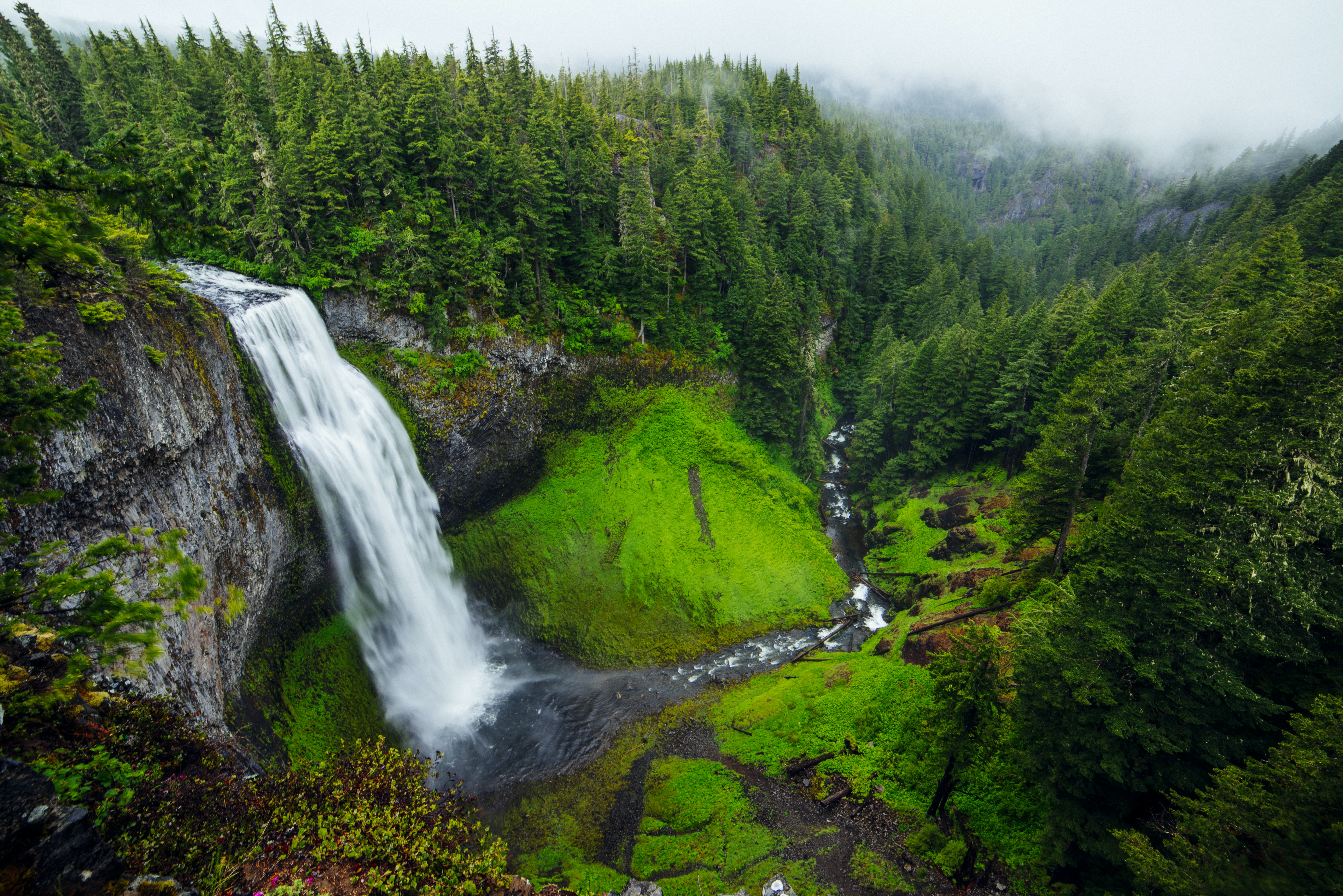 A high-angle shot of a frothy waterfall pouring down into a forest stream