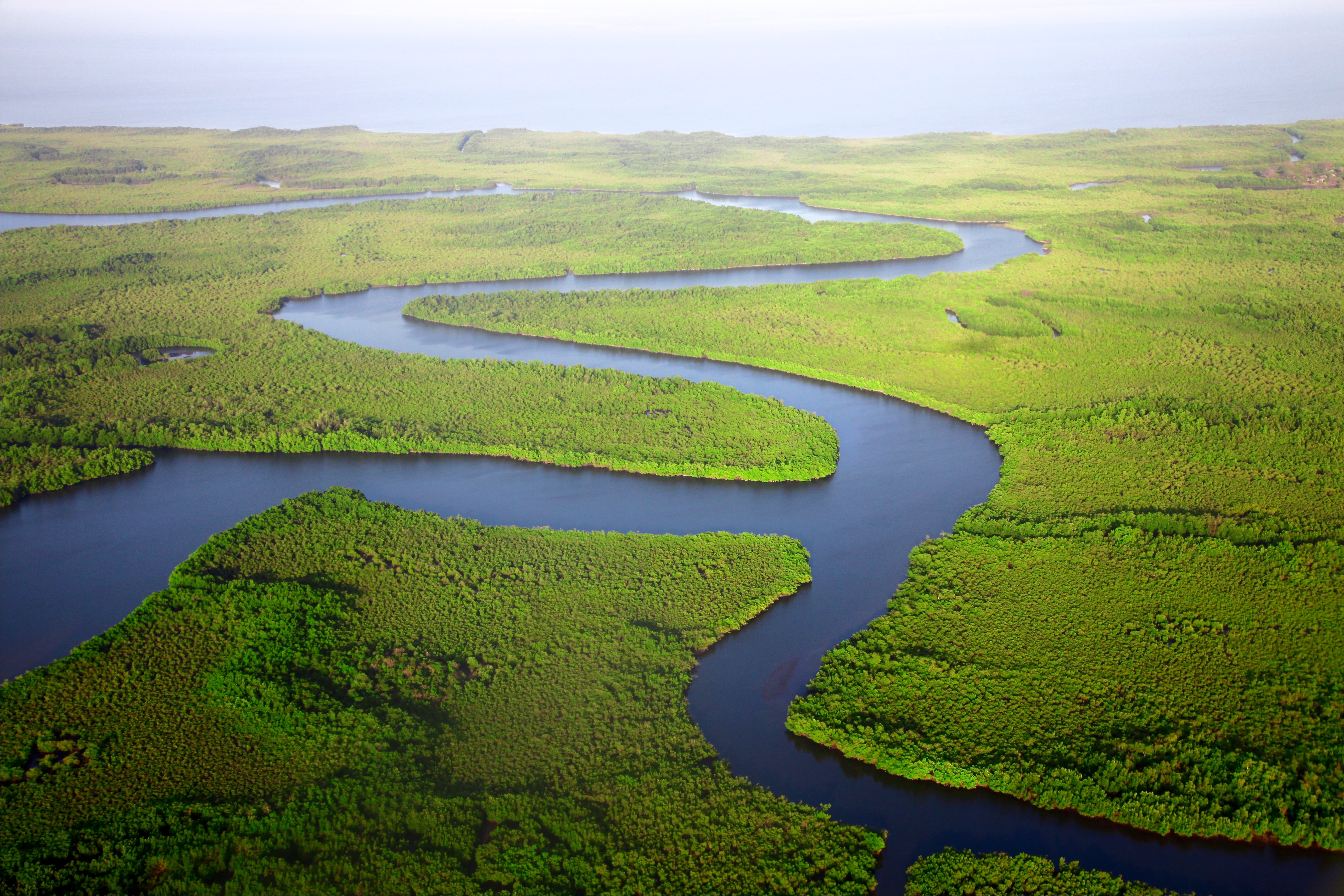 A drone shot of a meandering river surrounded by green forests in The Gambia