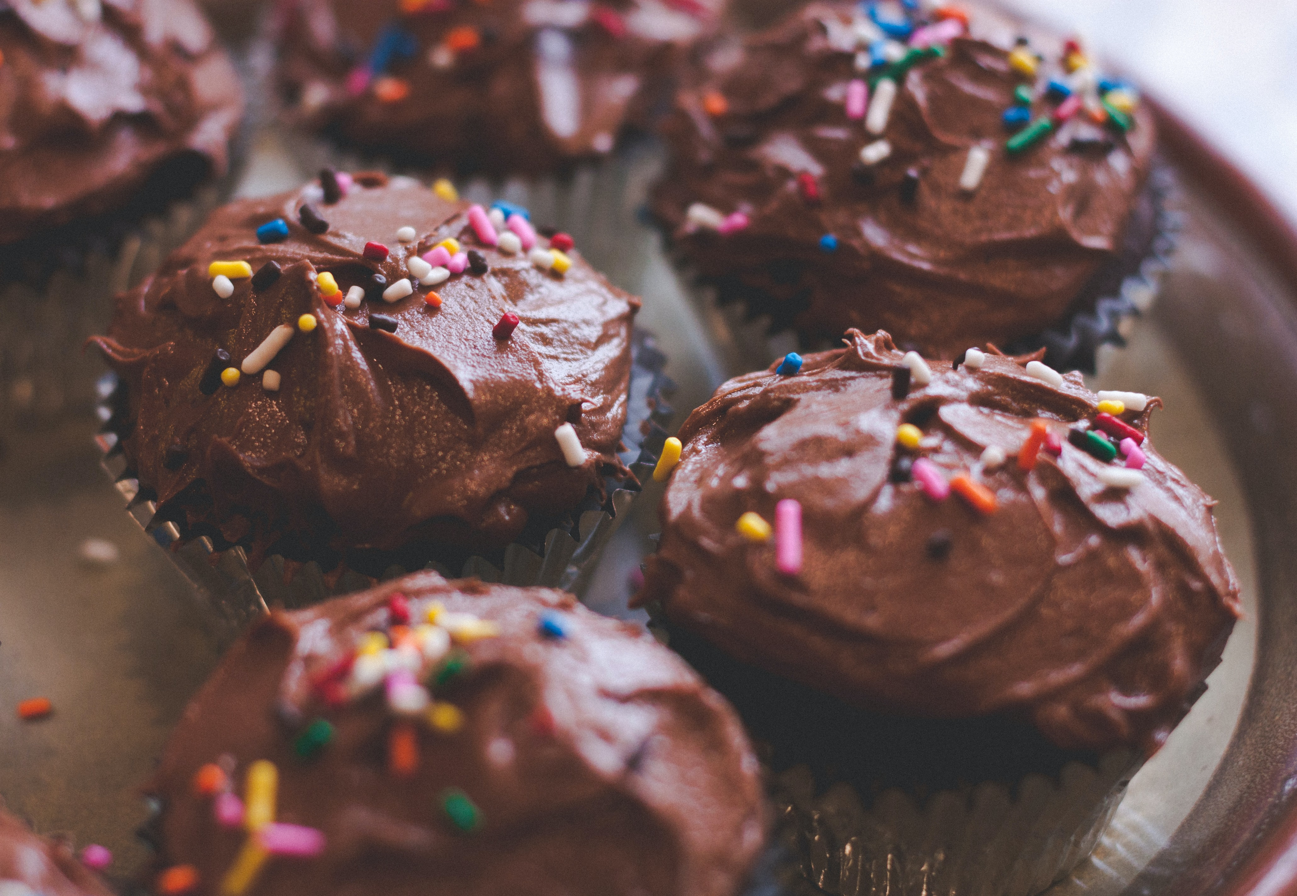 Homemade chocolate cupcakes with chocolate frosting and rainbow sprinkles