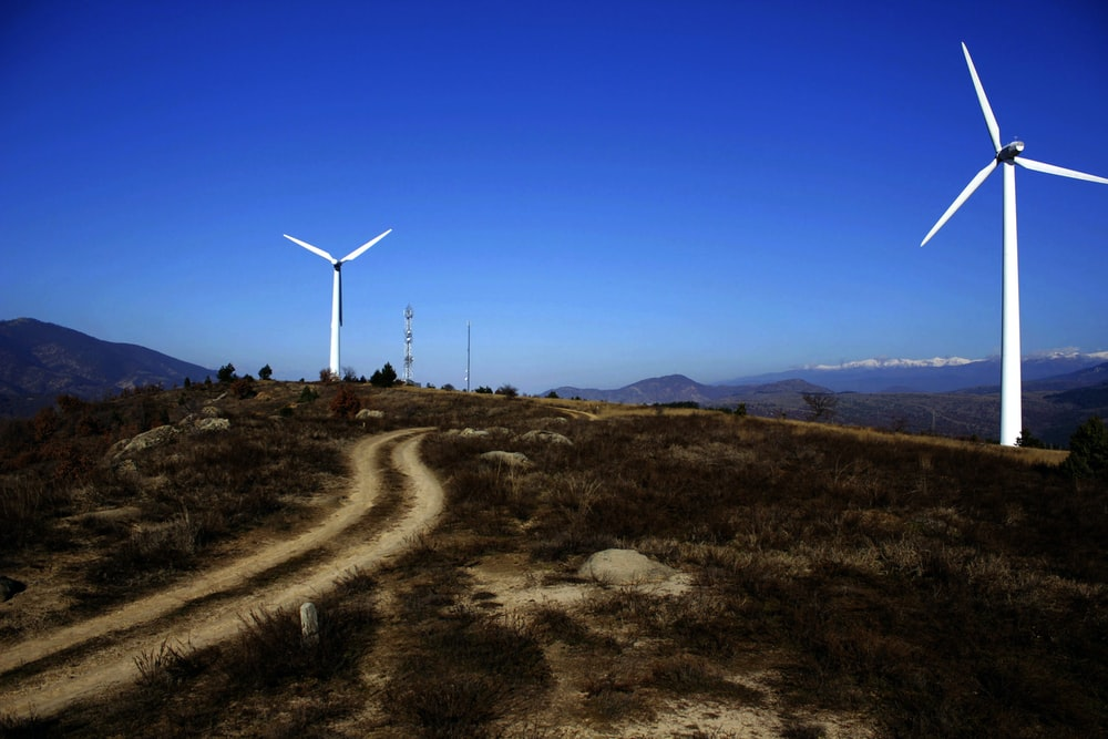 brown grass and two white windmills