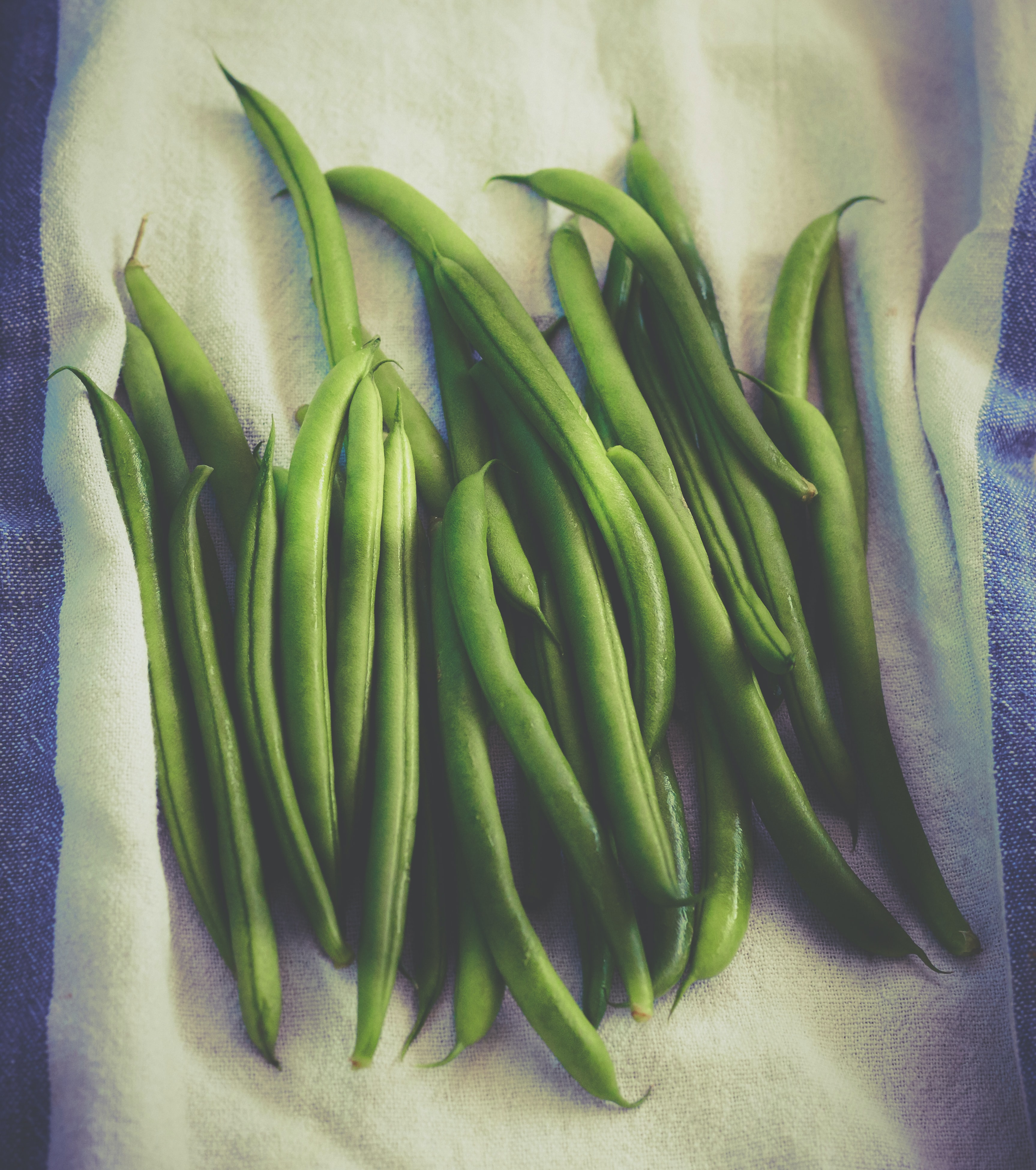 Bunch of freshly washed green beans