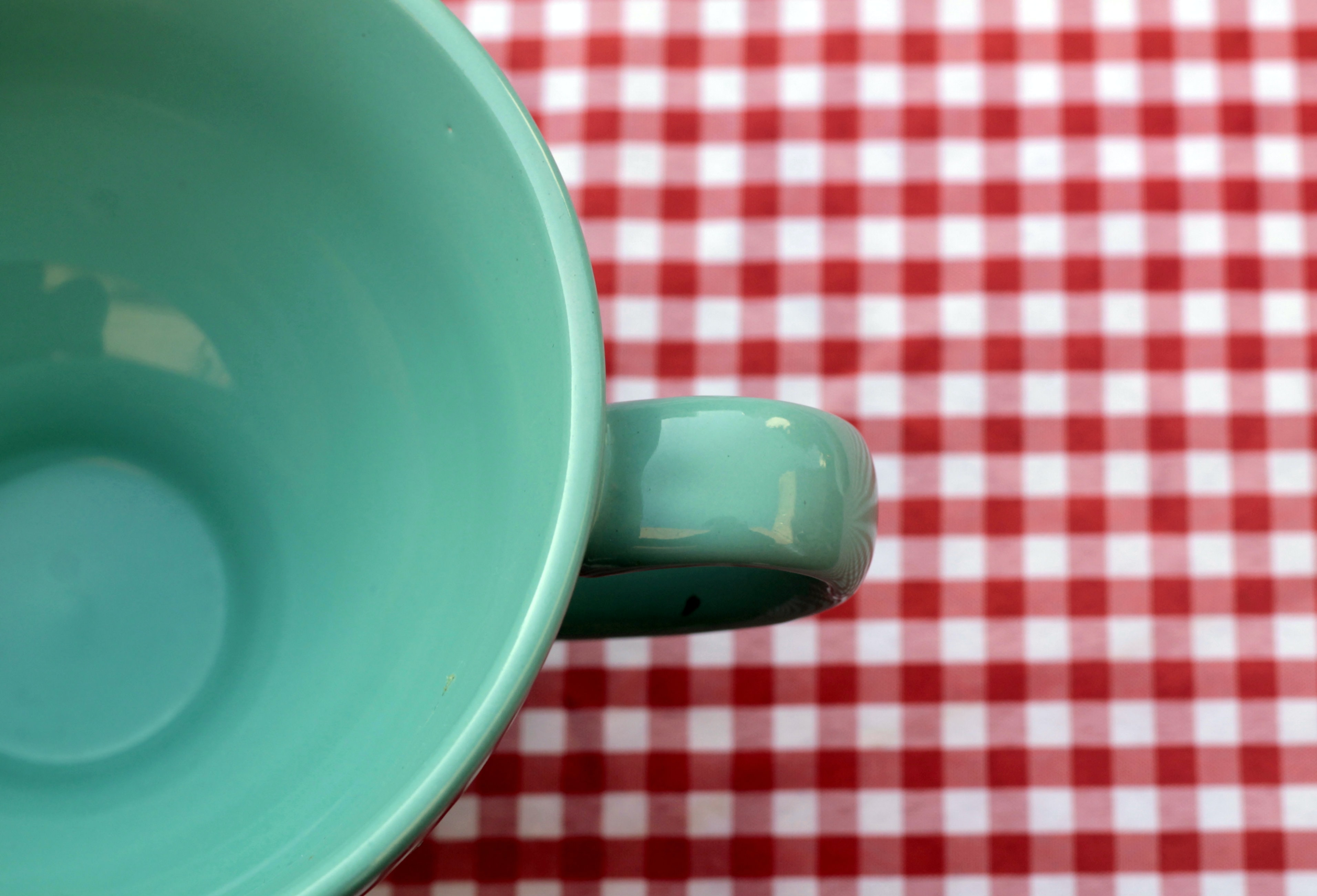 Mint green mug on red gingham table