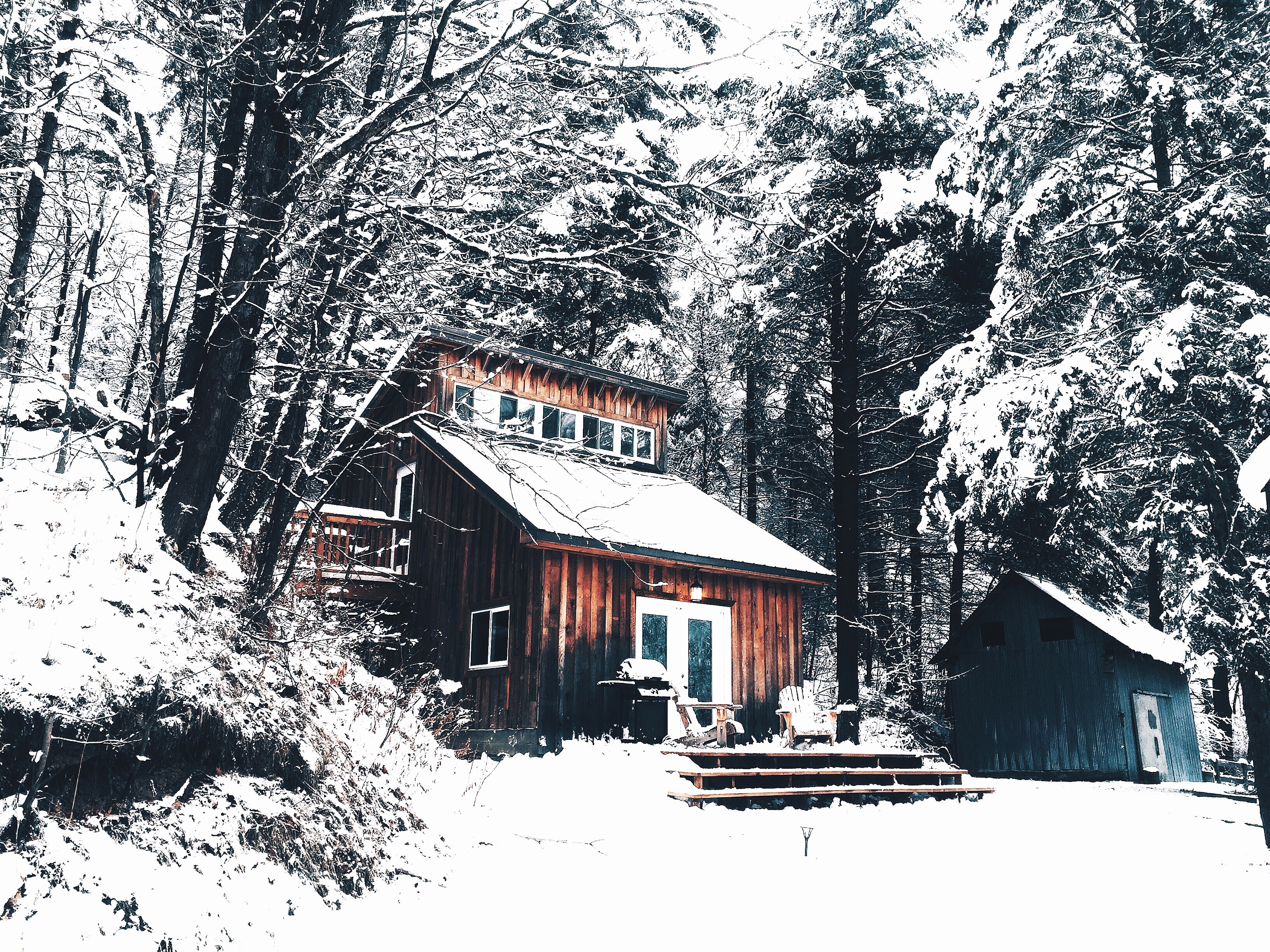 A wood cabin in a snowy winter forest