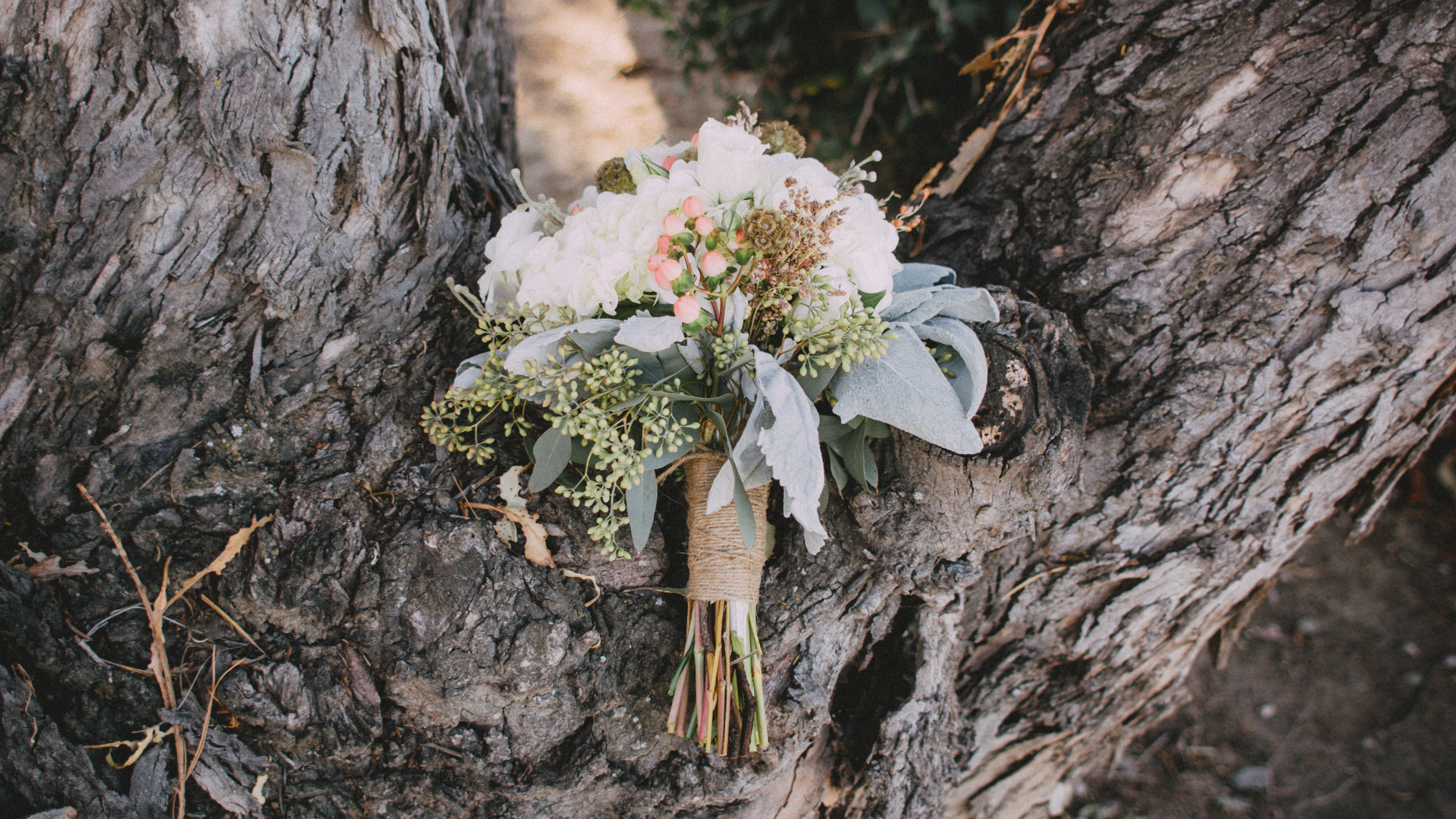 A floral bouquet on a trunk of a large tree