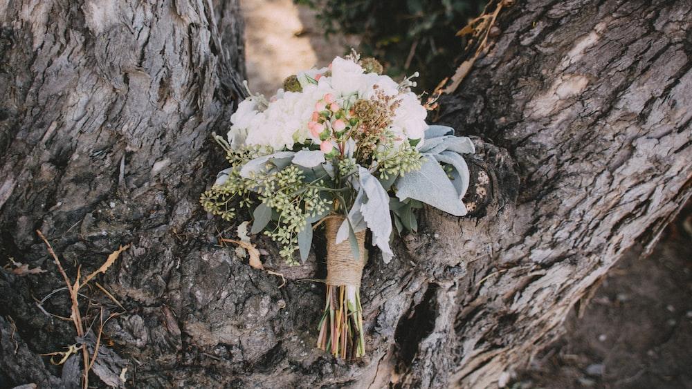 flower bouquet on tree trunk