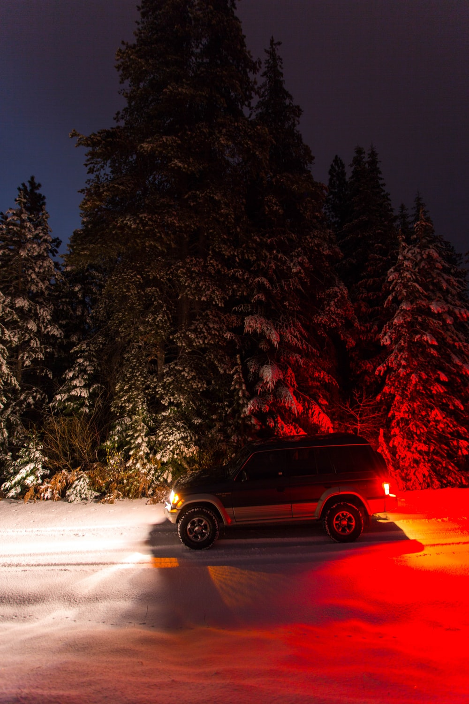black SUV besie pine trees