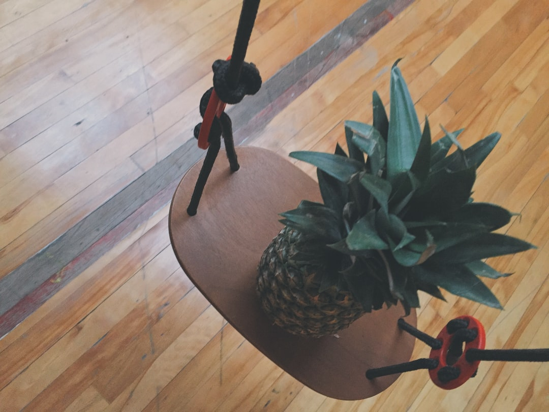 Photo of a Pineapple on a Swing