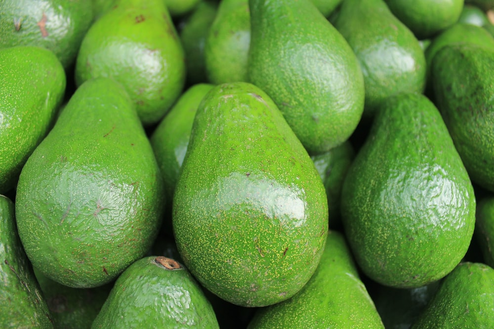 avocado fruits