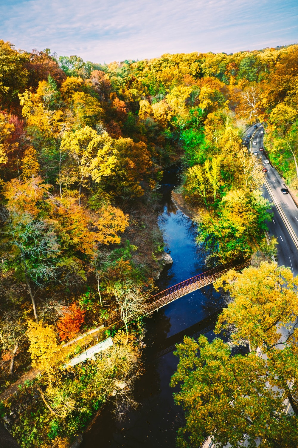 aerial photography of brown metal bridge surrounded with trees while cars on road