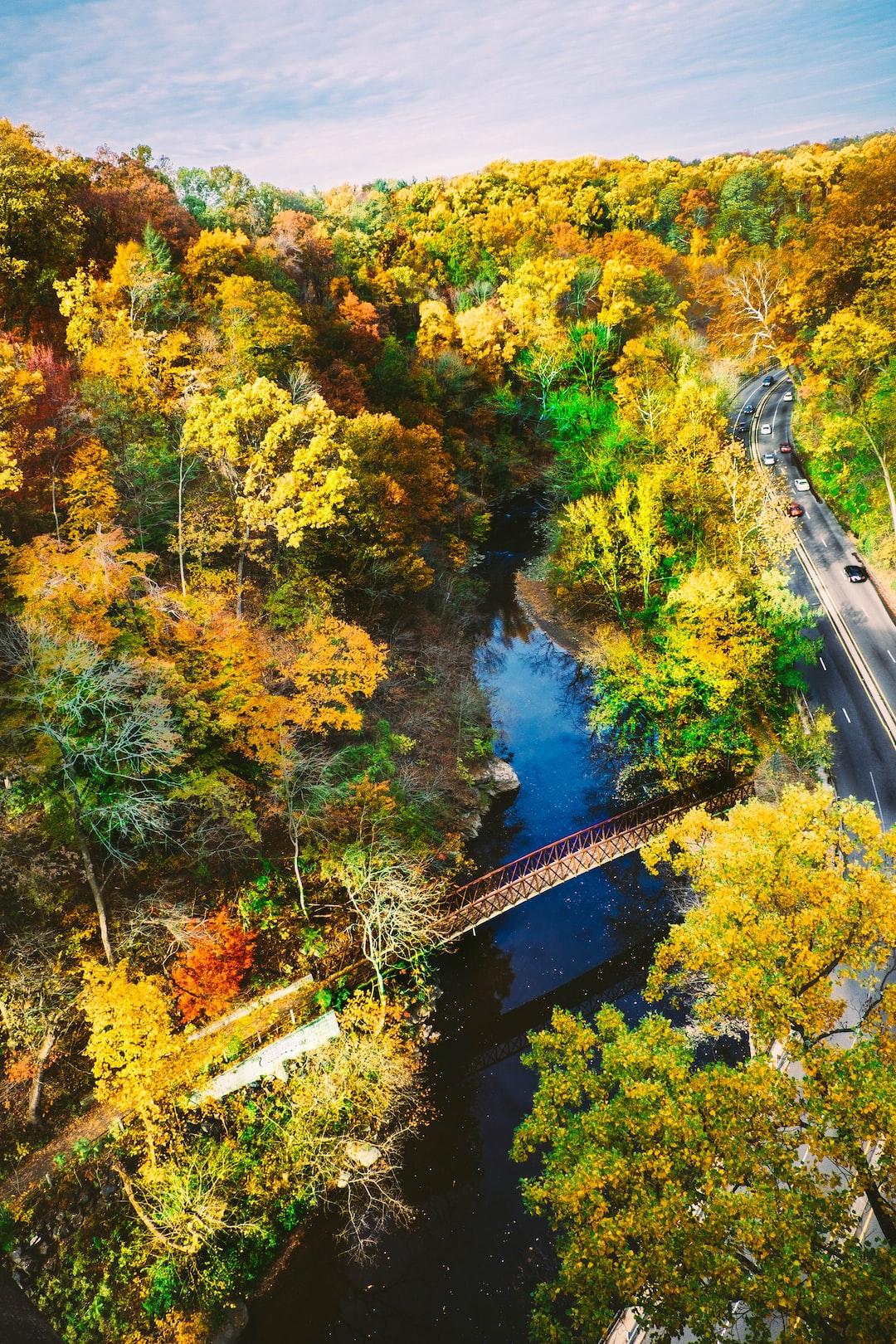 Scenic river with a bridge