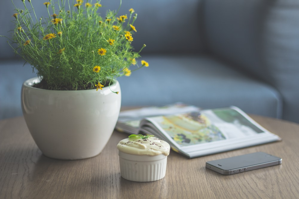 yellow petaled flower plant beside book and iPhone 5s
