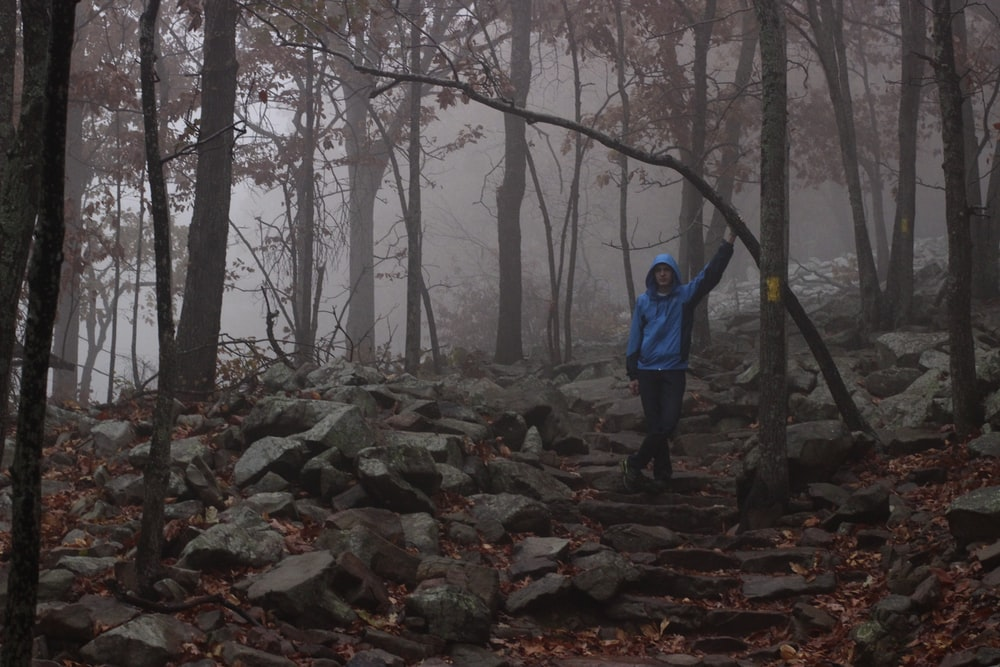 man wearing blue hooded jacket and black pants standing on rock in middle of forest during daytime
