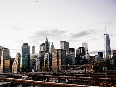 New York: fosse comuni nei parchi pubblici ?