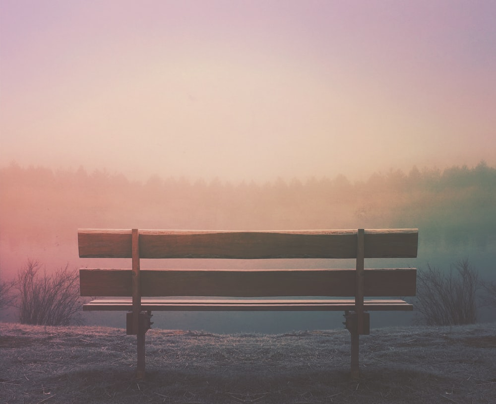 brown wooden bench in field