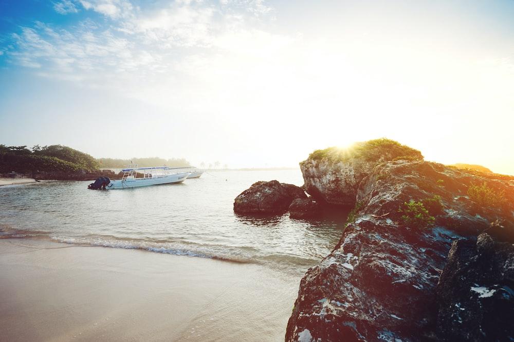 white boat near seashore during daytime