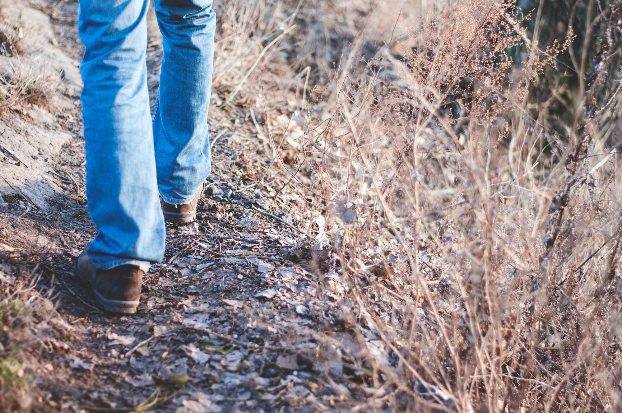 澳洲打工度假,找工作焦慮該怎麼辦? 一次公園散步改變我的思路