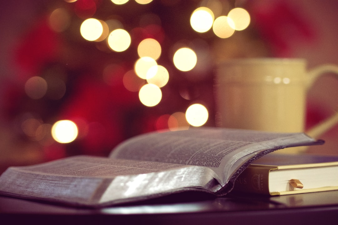 10 Business Books to Read Over Christmas Break
