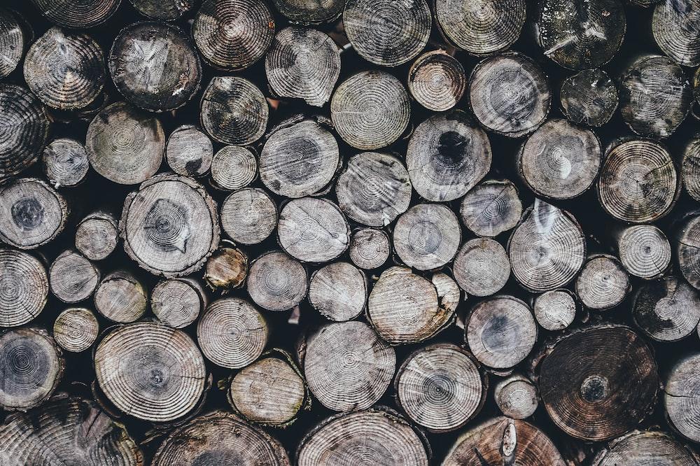 grey logs
