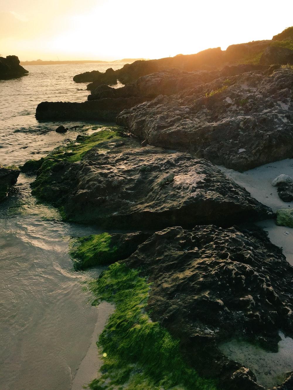 brown rocks beside ocean