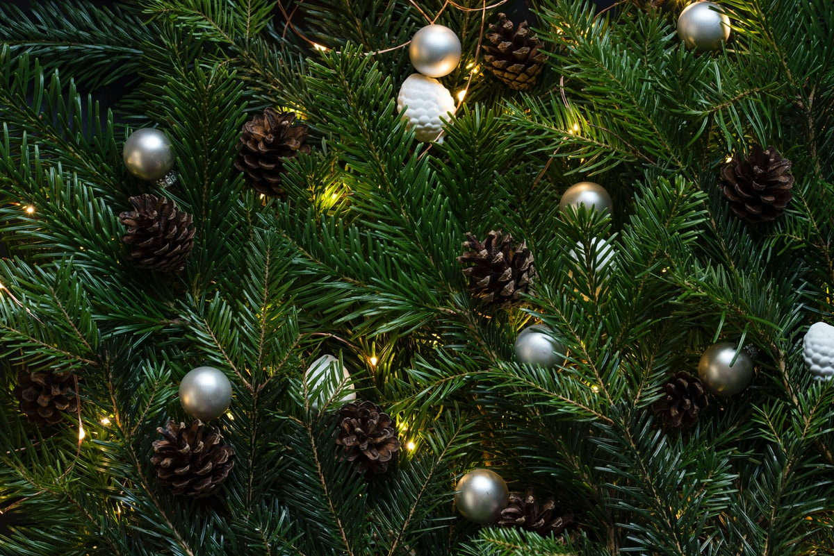 Bücherei Neusäß Weihnachten Öffnungszeiten 2018 / 2019