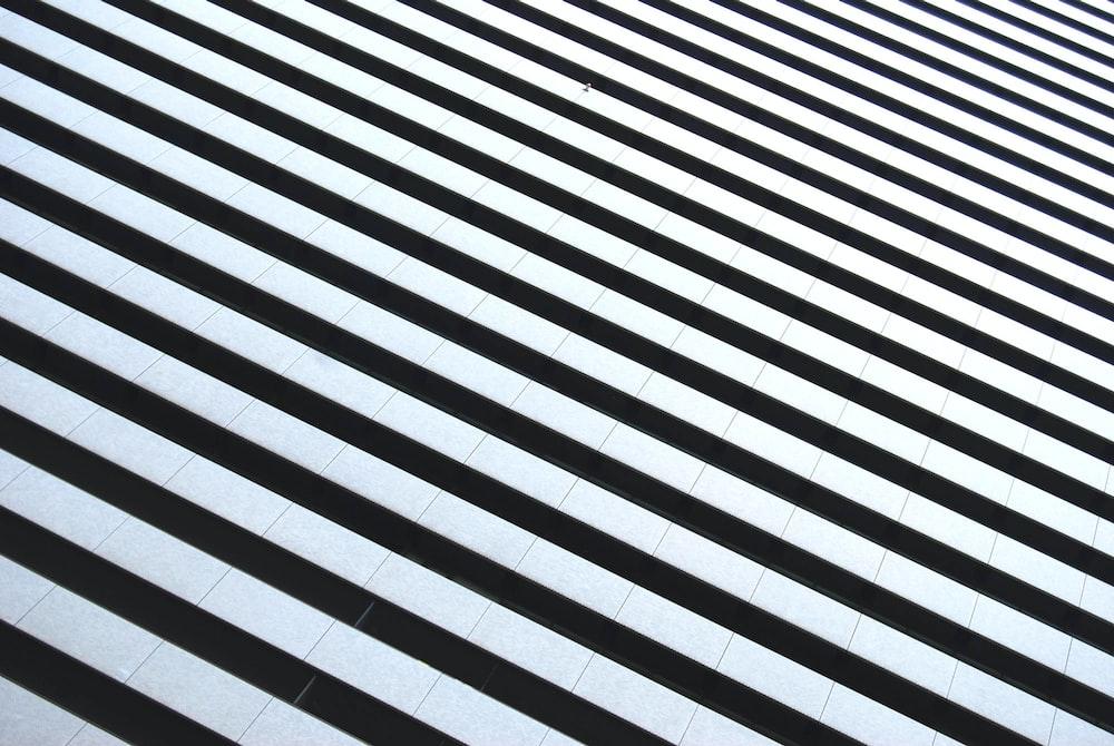 white and black striped illustration