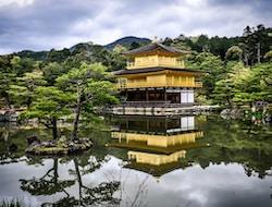 Kyoto (M)