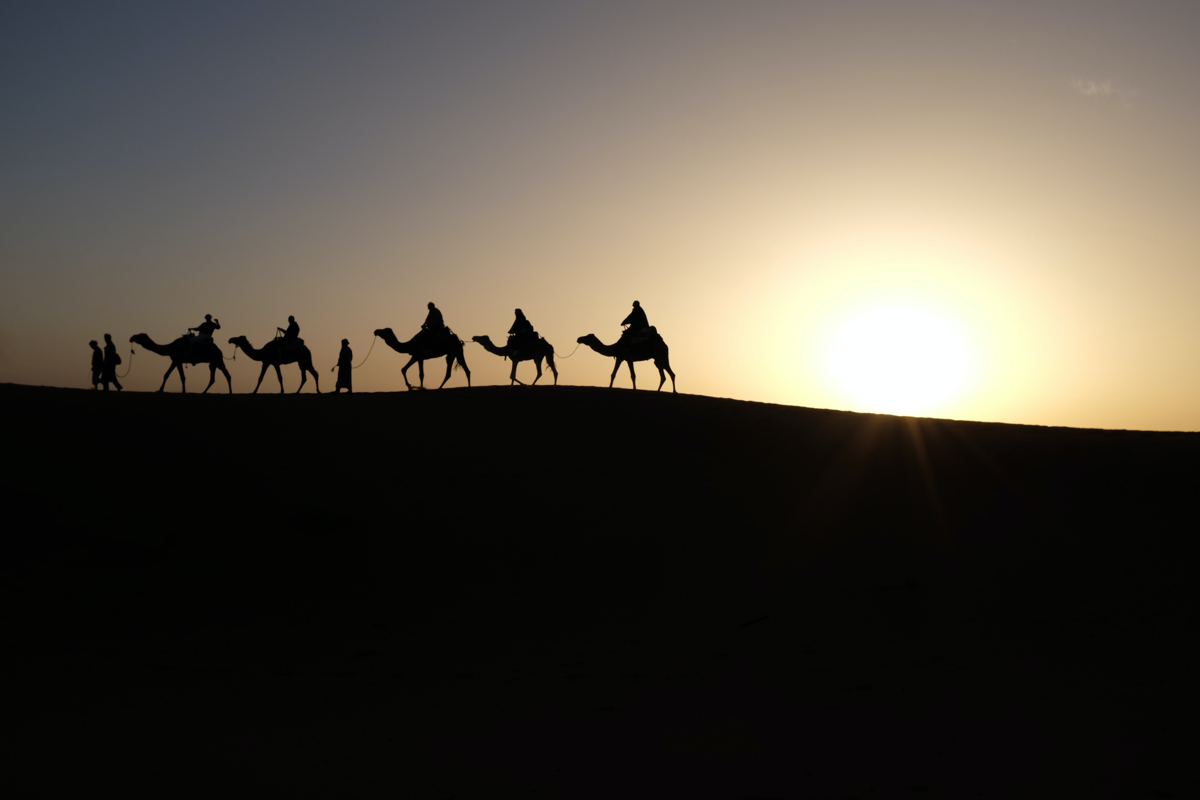 Silhouette of people walking with camels along the horizon in the Sahara desert