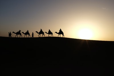 silhouette of people riding on camels wise men zoom background