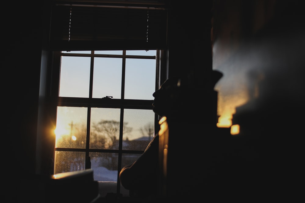 silhouette photography of window