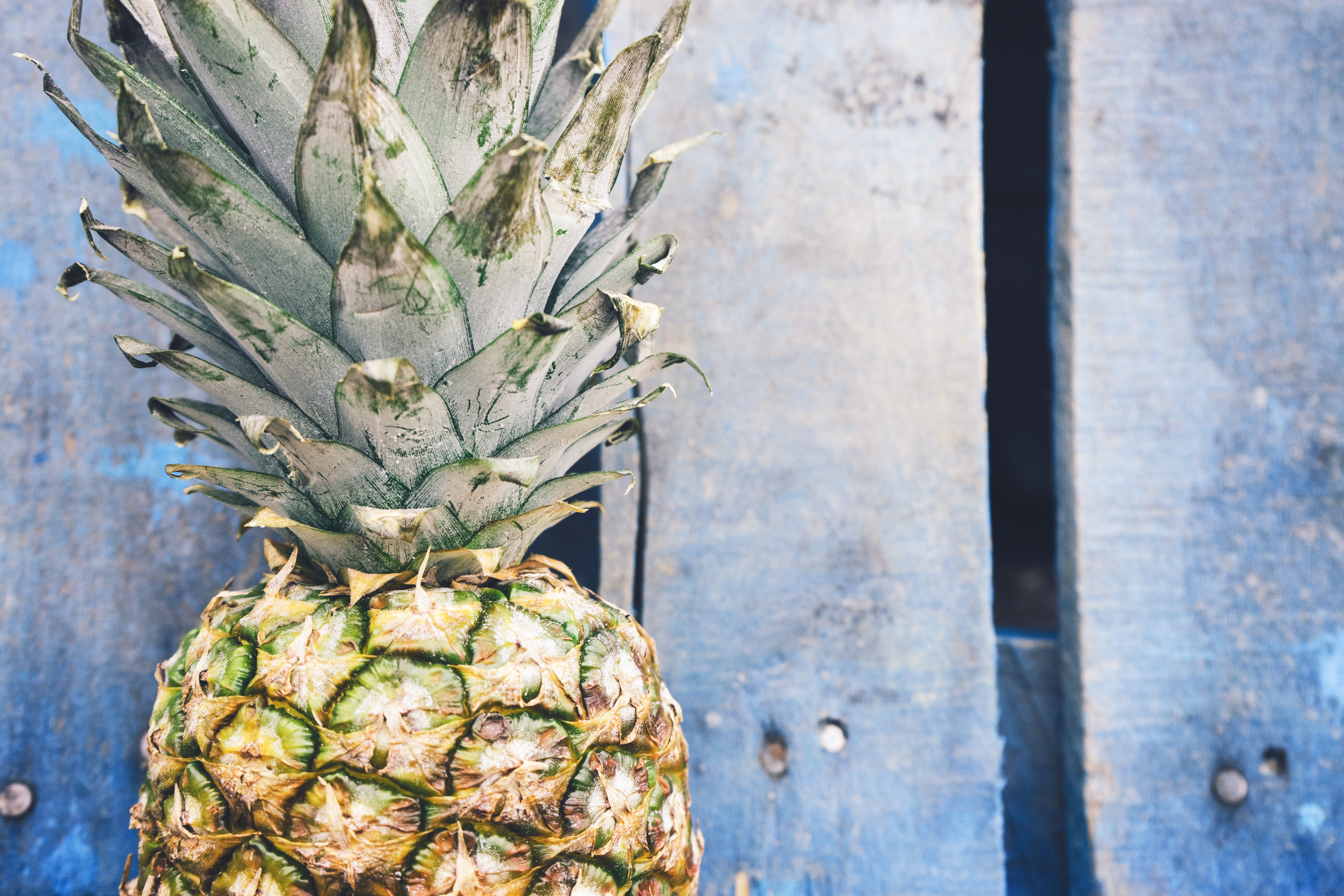 Free Unsplash photo from Pineapple Supply Co.