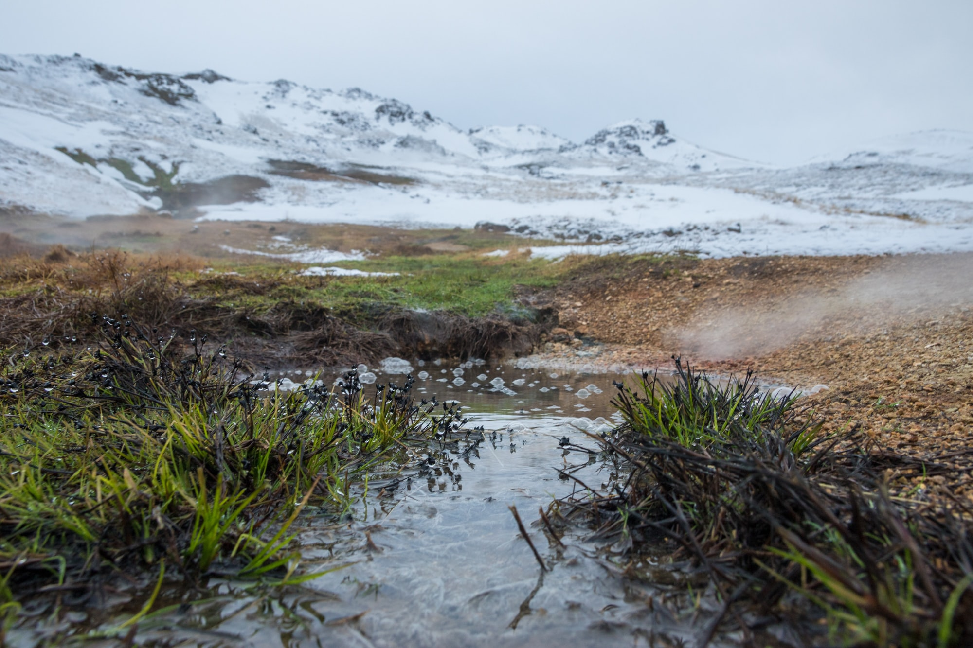 A stream of water runs through grass towards a mountain topped with snow in Reykjanesbær, Iceland